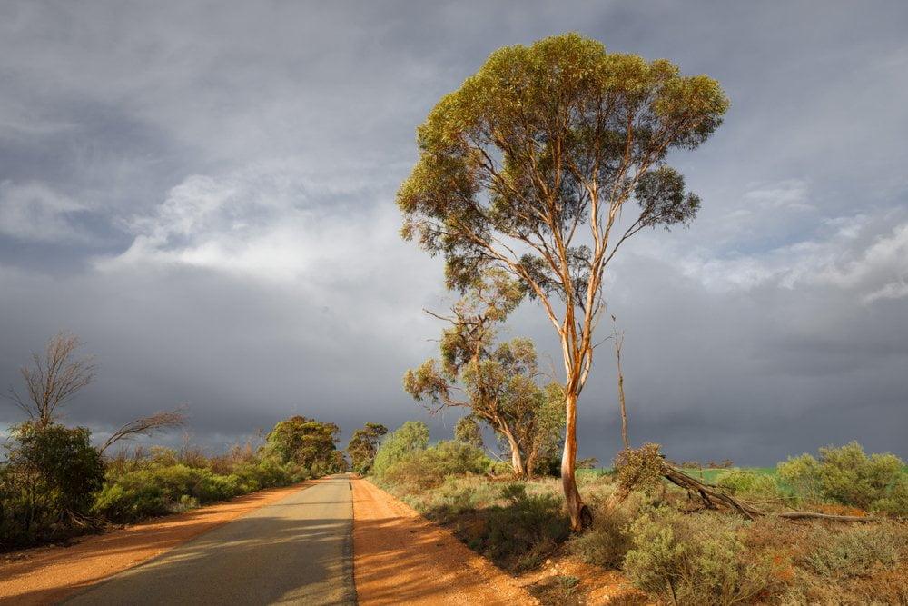 put u australiji