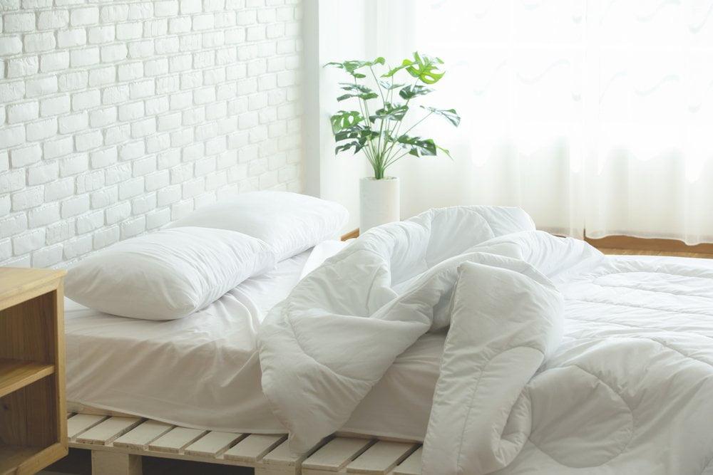 krevet i cebe