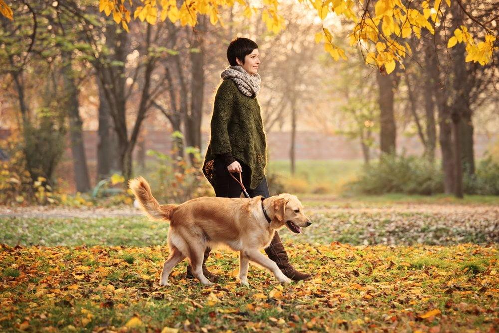 zena seta psa u prirodi