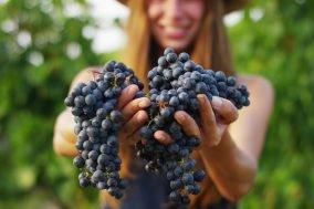 devojka drzi grozdje u rukama