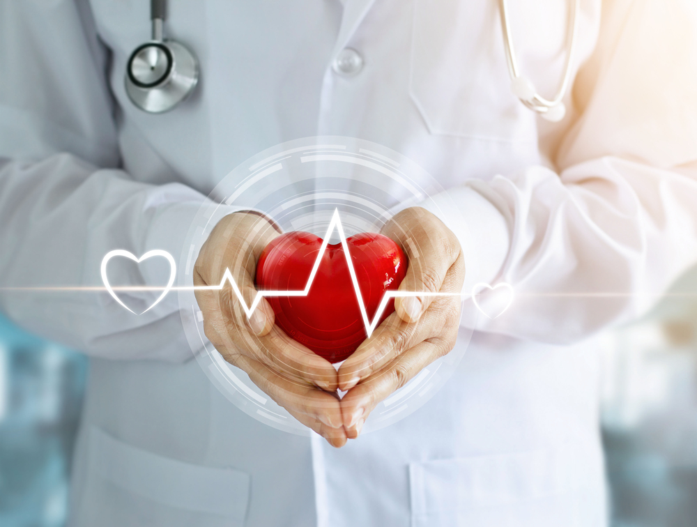 doktor drži plastično srce