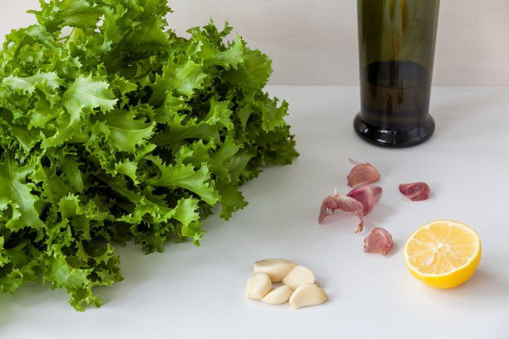 salata od endivije