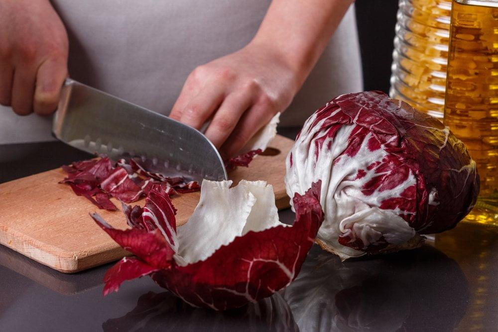 radič salata