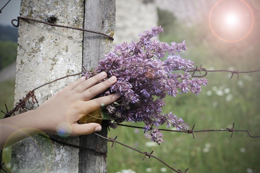 ruka na cvetu