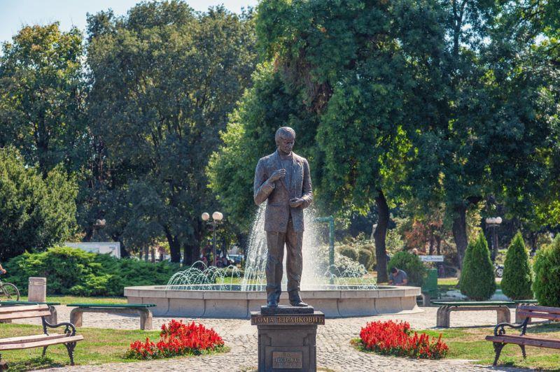 Spomenik Tomi Zdravkoviću